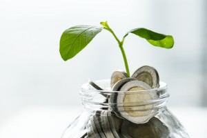 How to Make Your Finances Bloom this Spring